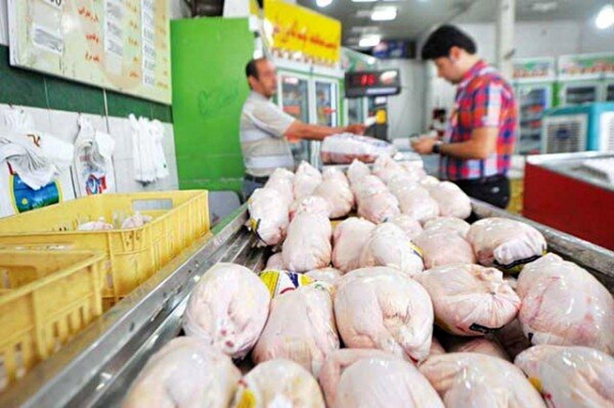 پیش بینی قیمت مرغ همه را نگران کرد