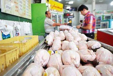 قیمت مرغ به 45 هزار تومان رسید!