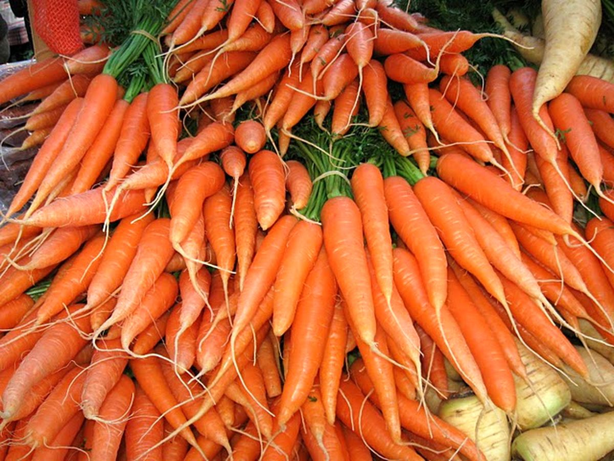 هویج باز هم رکورد زد