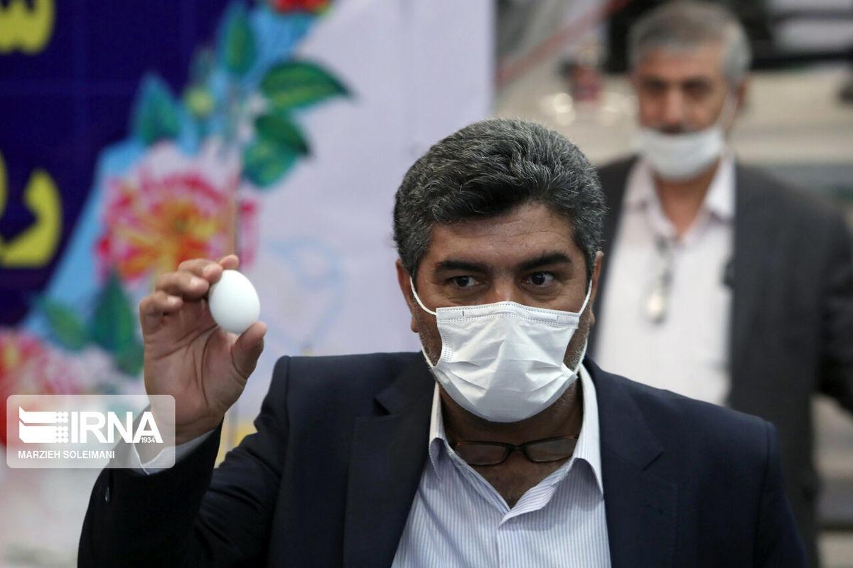 نامزد انتخابات 1400 با تخم مرغ وارد شد