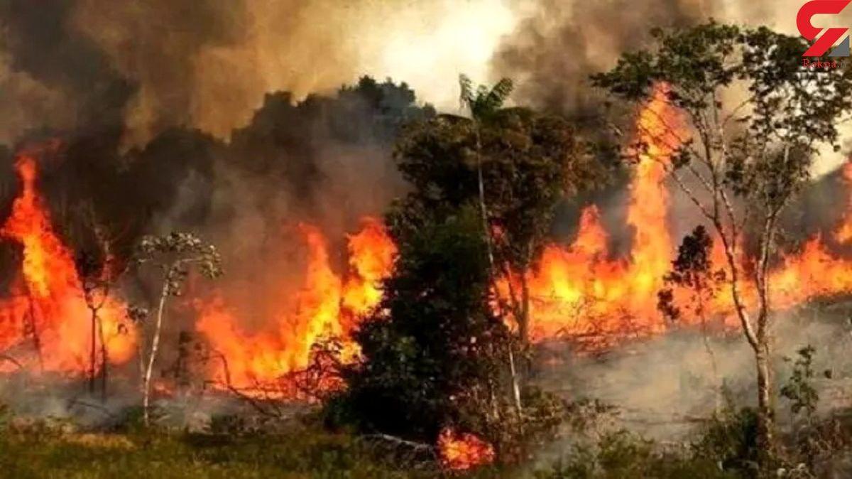 آتش سوزی جنگل ها در گلستان؛ عملیات اطفای حریق به کندی پیش می رود