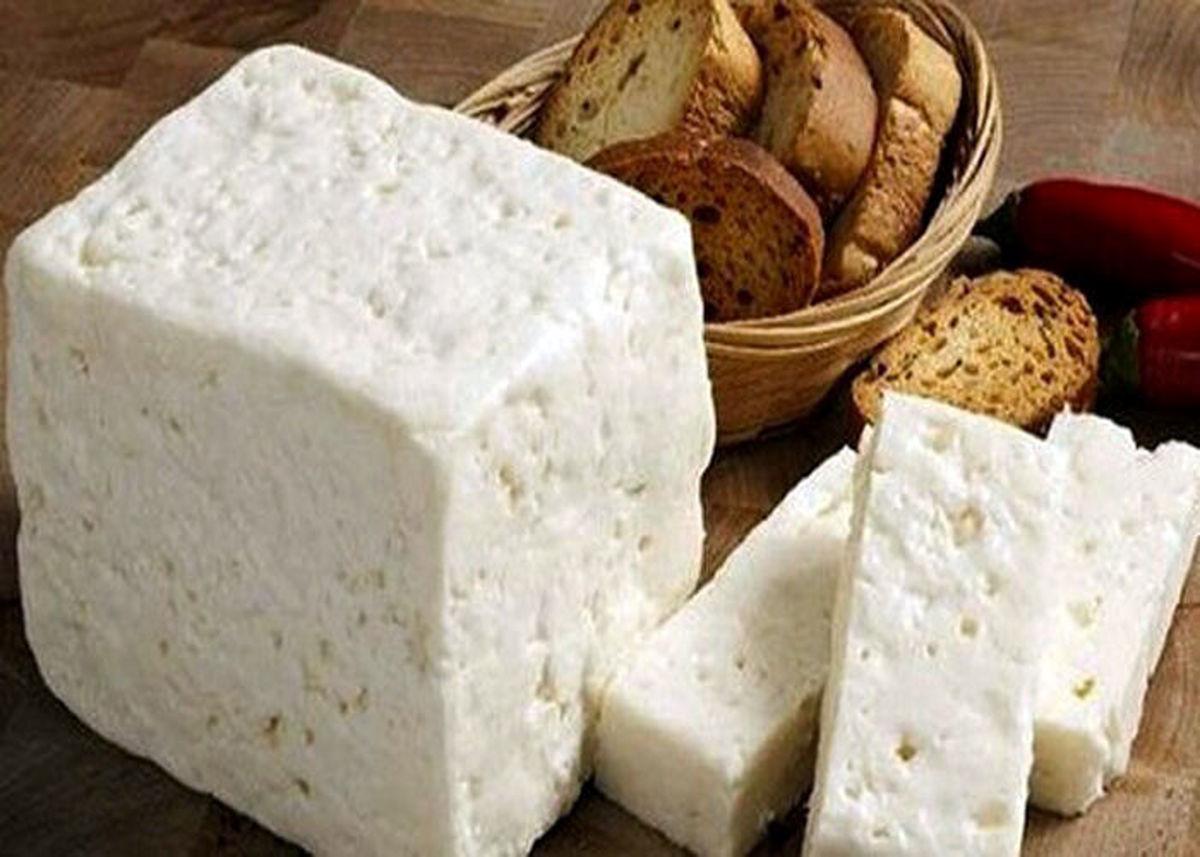 پنیر هم گران شد! +قیمت جدید